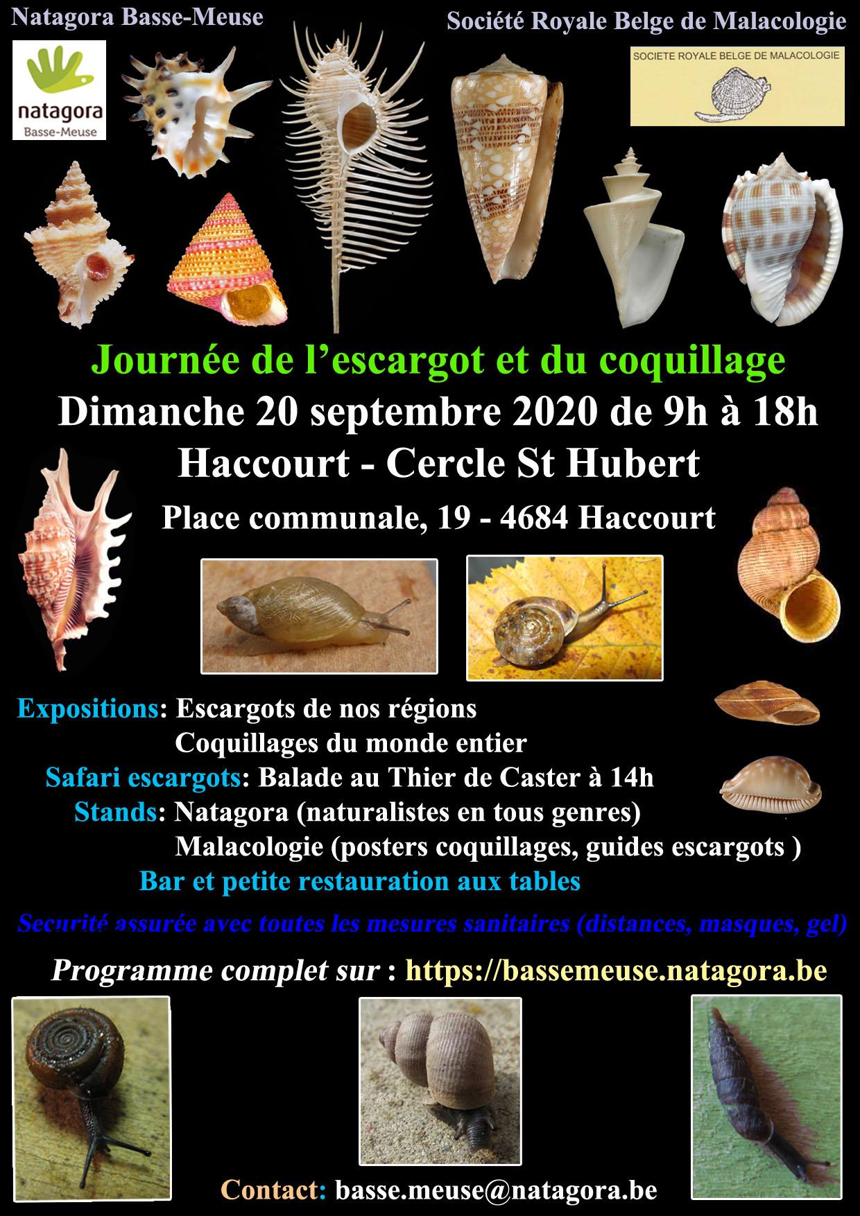 rencontres internationales du coquillage 2020)
